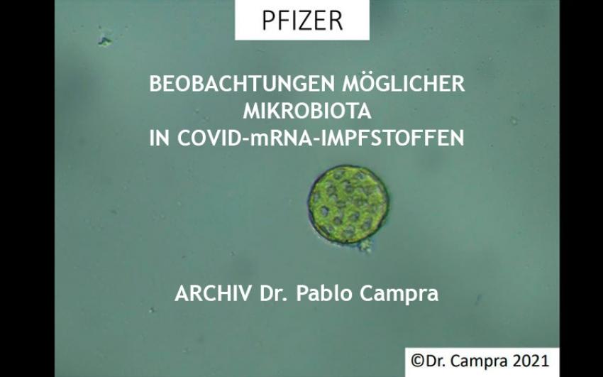 Archiv Dr Campra